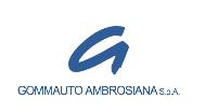 Gommauto Ambrosiana (MI) cliente dal 1995